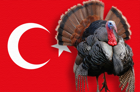 turkey-flag2