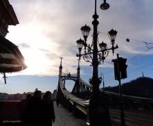 Budapest, il Ponte Verde