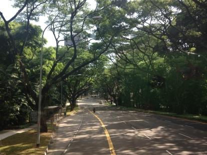 Dalle parti di Orchard Road, Singapore