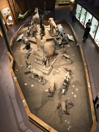 Museo Nazionale - Národní muzeum